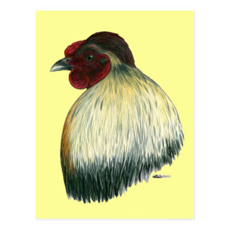 Mapuche Huastec Rooster Postcard