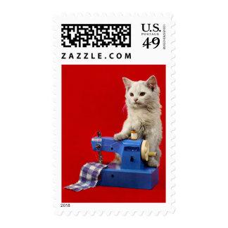 máquina de coser del gato turco del angora del sello postal