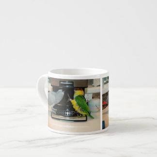 Máquina del café del loro del gris africano y del  taza espresso