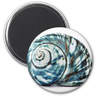Mar azul Shell en el fondo blanco Imán Redondo 5 Cm