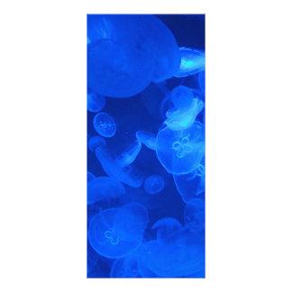 mar-creatina azul del acuario de las medusas jelly