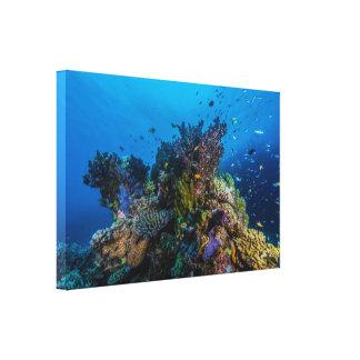Mar de coral - pescados y filón tropicales - lona lienzo envuelto para galerias