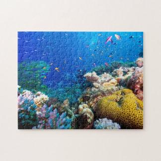 Mar de coral - pescados y filón tropicales - puzzles con fotos