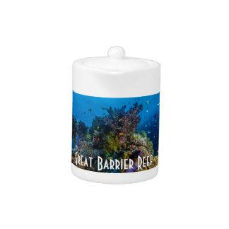Mar de coral tropical de la gran barrera de coral