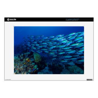 Mar de coral tropical de la gran barrera de coral 38,1cm portátil calcomanías