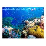 Mar de coral tropical de la gran barrera de coral postales
