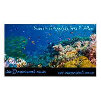 Mar de coral tropical de la gran barrera de coral tarjetas de visita