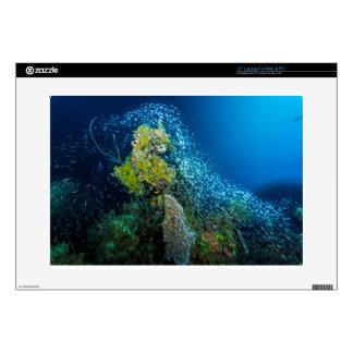Mar de coral tropical de los pescados de la gran 38,1cm portátil calcomanía