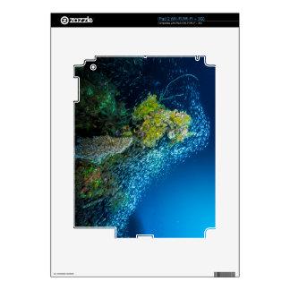 Mar de coral tropical de los pescados de la gran calcomanía para el iPad 2