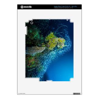 Mar de coral tropical de los pescados de la gran pegatina skin para iPad 3