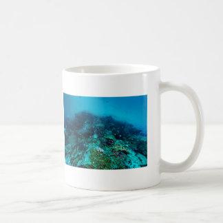 Mar de coral tropical de los pescados de la gran taza de café