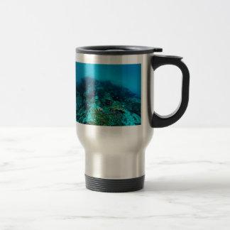 Mar de coral tropical de los pescados de la gran taza de viaje