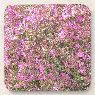 Mar de flor rosa posavasos de bebidas