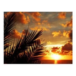 Mar de la puesta del sol y postal de oro de Palmtr