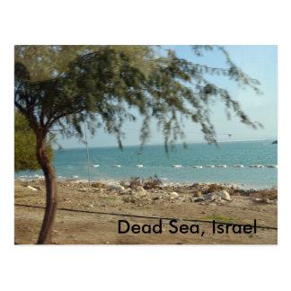 Mar muerto, Israel Tarjeta Postal