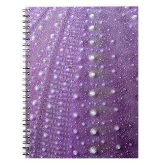 Mar Pilluelo-Púrpura Libreta Espiral