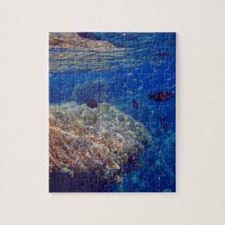 Mar Rojo asombroso Puzzles Con Fotos