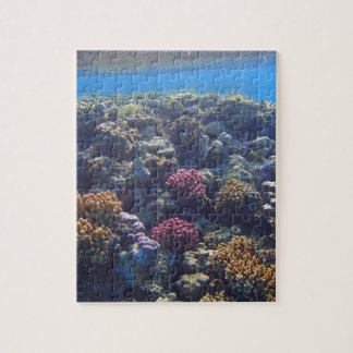 Mar Rojo asombroso Puzzles