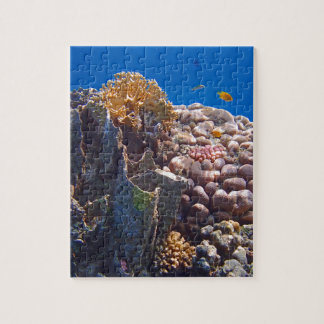 Mar Rojo colorido Puzzle