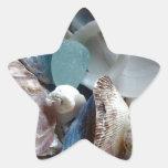Mar Shell de cristal recogido Etiquetas