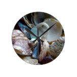 Mar Shell de cristal recogido Relojes