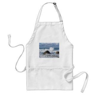 Mar tempestuoso a lo largo de la costa costa de delantal
