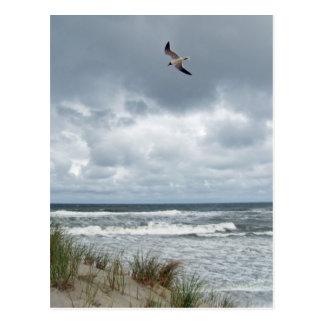Mar tempestuoso postal