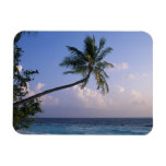 Mar y palmera iman de vinilo