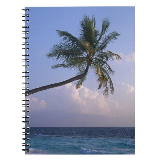 Mar y palmera libro de apuntes con espiral
