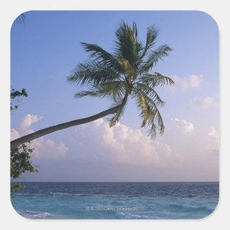 Mar y palmera pegatina cuadrada