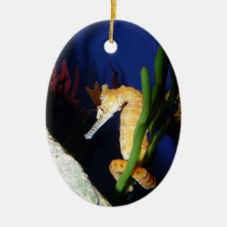 Mar yo caballo alrededor ornaments para arbol de navidad