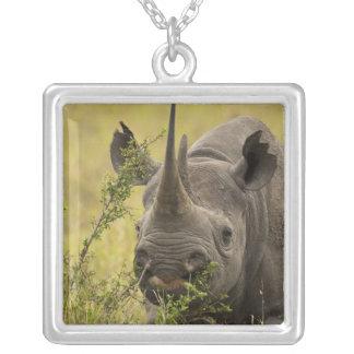 Mara Triangle, Masai Mara Game Reserve, Kenya, Silver Plated Necklace
