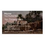 Marabut near Biskra, Algeria vintage Photochrom Business Card Template