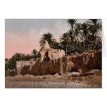 Marabut near Biskra, Algeria vintage Photochrom Cards