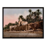 Marabut near Biskra, Algeria vintage Photochrom Post Cards