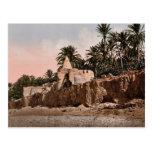 Marabut near Biskra, Algeria vintage Photochrom Postcards