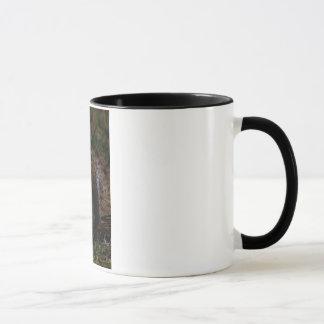Maracas make wonderful music mug