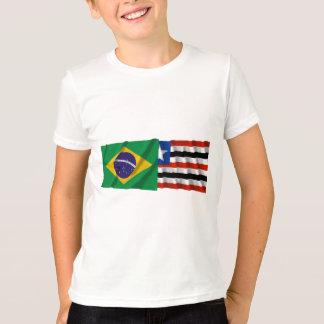 Maranhão y banderas que agitan del Brasil Poleras