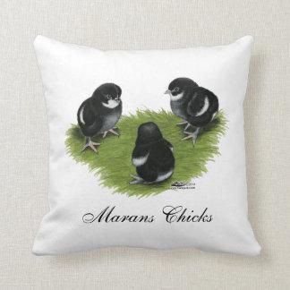 Marans Black Copper Chicks Pillows