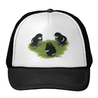 Marans Black Copper Chicks Trucker Hat