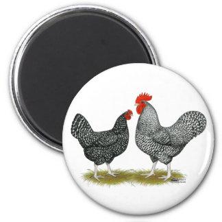 Marans:  Cuckoo Pair Magnet
