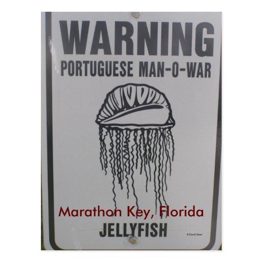 Marathon Key, Florida Postcard