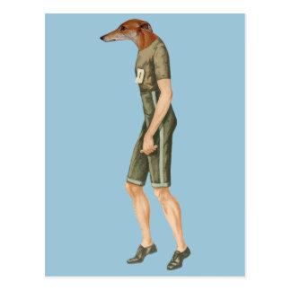 Marathon Sprinter Runner Greyhound Racing Post Cards