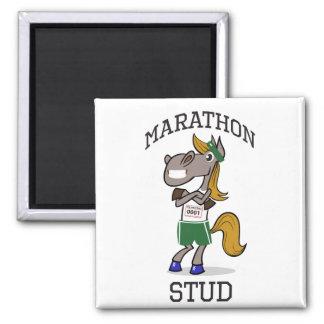 Marathon Stud Magnet