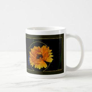 Maravilla 1 taza