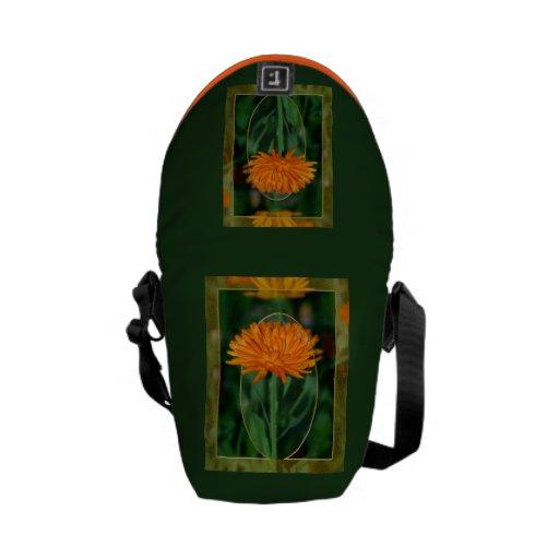 Maravilla 2 bolsas de mensajeria