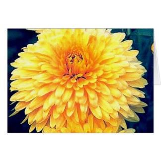 Maravilla amarilla tarjeta de felicitación