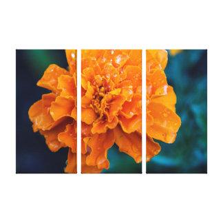 Maravilla anaranjada con arte de la pared del impresión en lona estirada