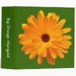 Maravilla anaranjada grande (los 2in) - verde 3366