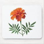 Maravilla anaranjada tapete de ratón